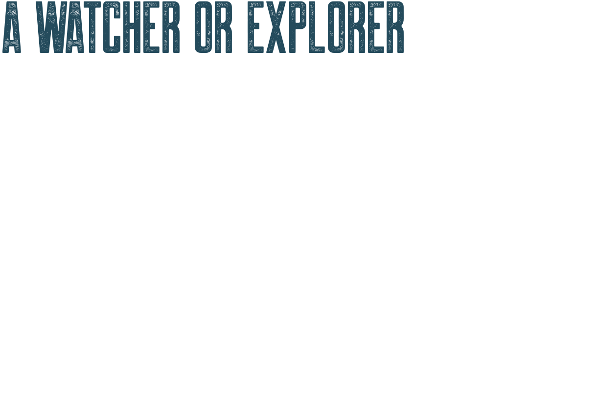 a watcher or visionary can be explorer too