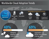 Worldwide Cloud Adoption Trends - An IDC-Infosys Study